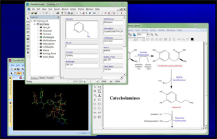 Draw molecules and reactions, correlate structures with properties and view compounds in 3D.